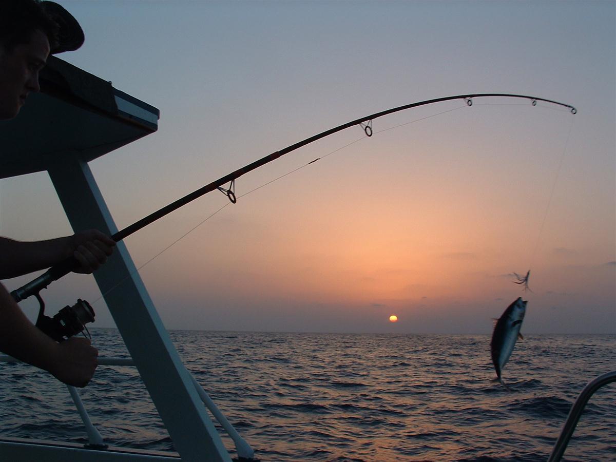 Fiska på Mallorca